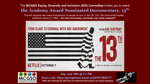 EDI 13th Netflix Flyer